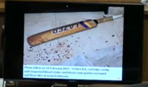 cricket bat spatter and cartridge on right
