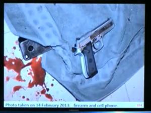 gun and reeva phone