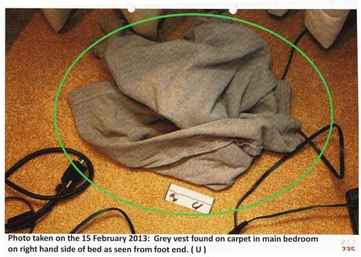Oscar grey shirt on bedroom floor