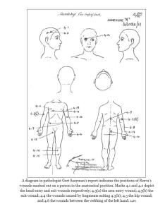 pathologist diagram
