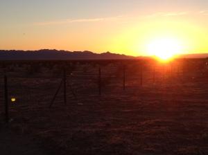 AZ sunrise 2